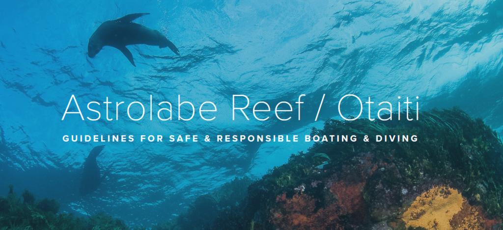 Astrolabe Reef Image